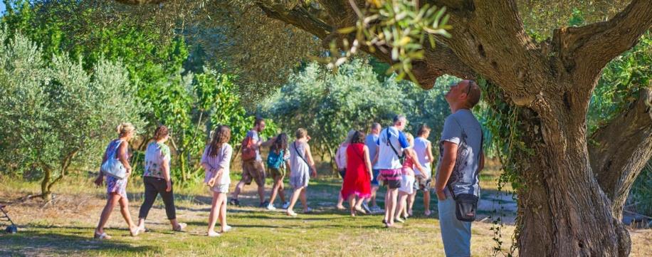 Bénéficiez d'un camping écologique avec le camping Lou Pantaï