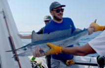 Pêche méditerranée