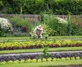 Découvrir le vrai métier d'un jardinier